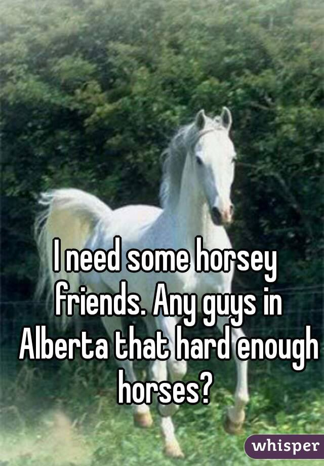 I need some horsey friends. Any guys in Alberta that hard enough horses?