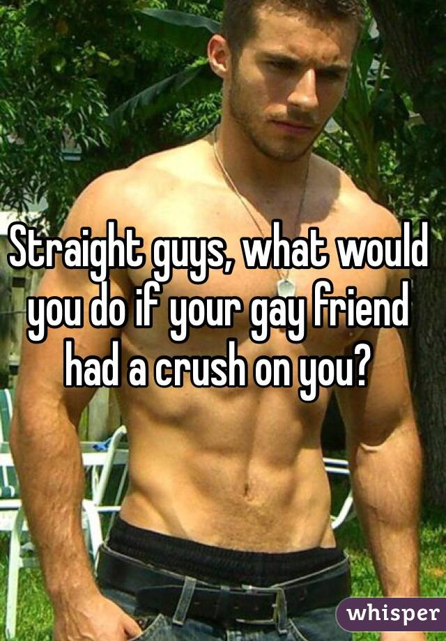 Straight guys, what would you do if your gay friend had a crush on you?