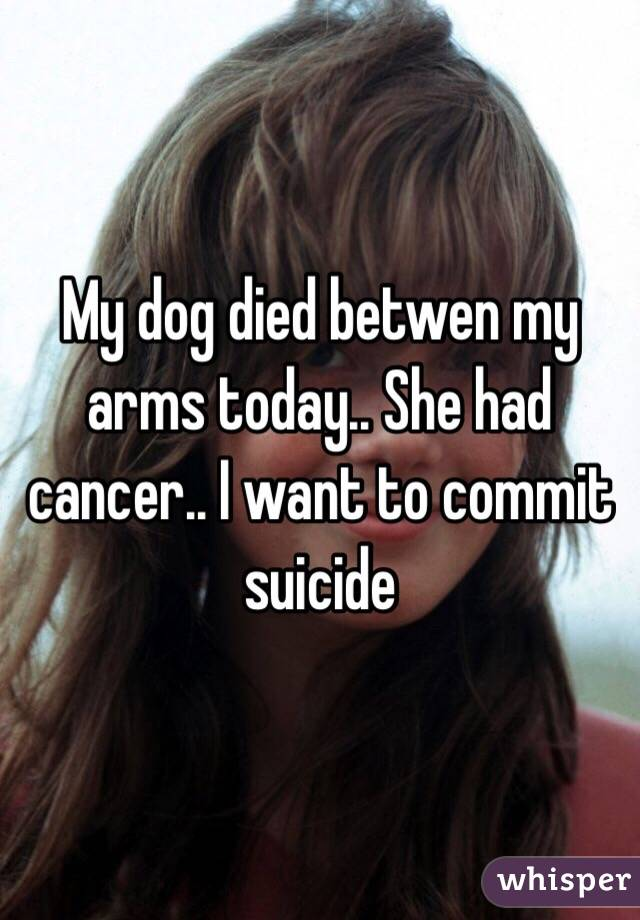 My dog died betwen my arms today.. She had cancer.. I want to commit suicide