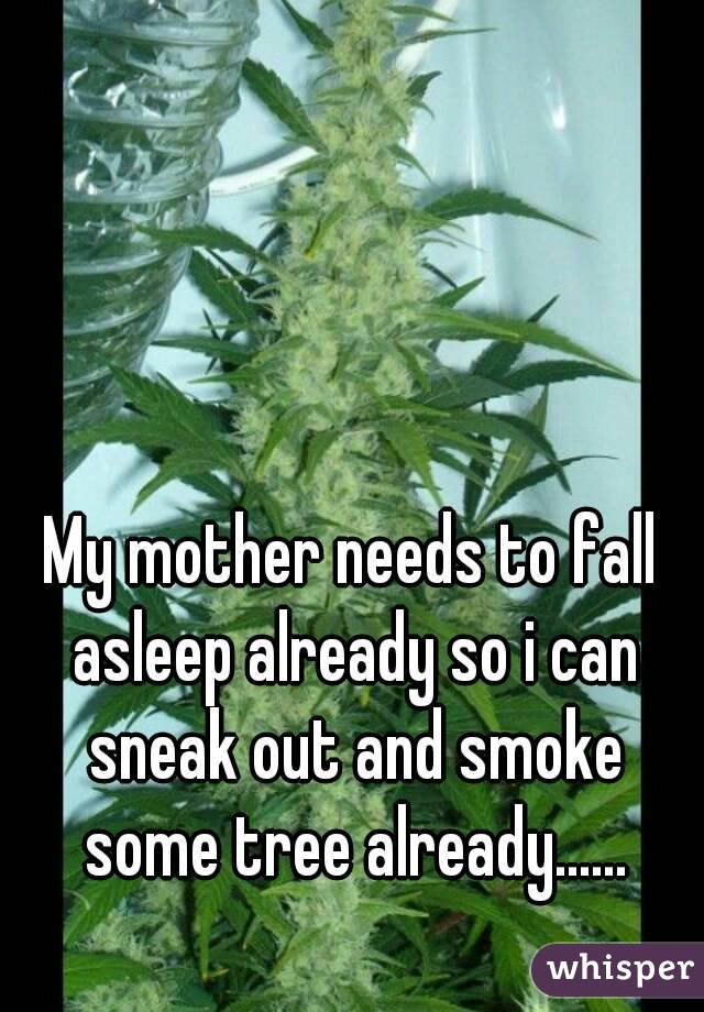 My mother needs to fall asleep already so i can sneak out and smoke some tree already......