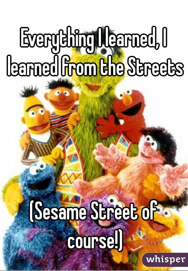 Everything I learned, I learned from the Streets     (Sesame Street of course!)