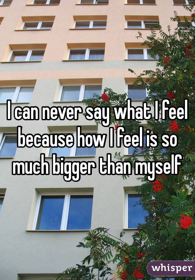 I can never say what I feel because how I feel is so much bigger than myself