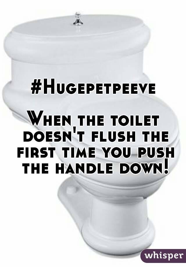 #Hugepetpeeve  When the toilet doesn't flush the first time you push the handle down!