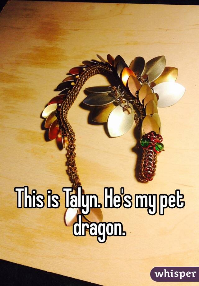 This is Talyn. He's my pet dragon.