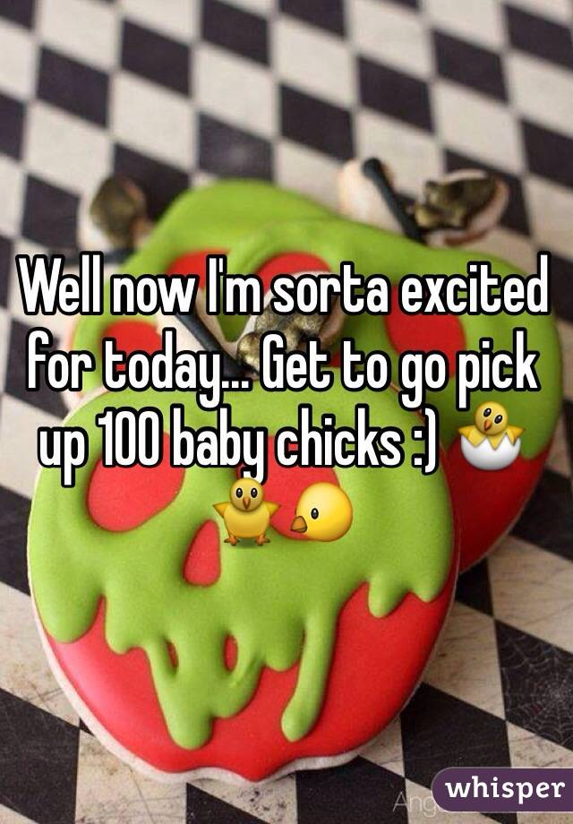 Well now I'm sorta excited for today... Get to go pick up 100 baby chicks :) 🐣🐥🐤