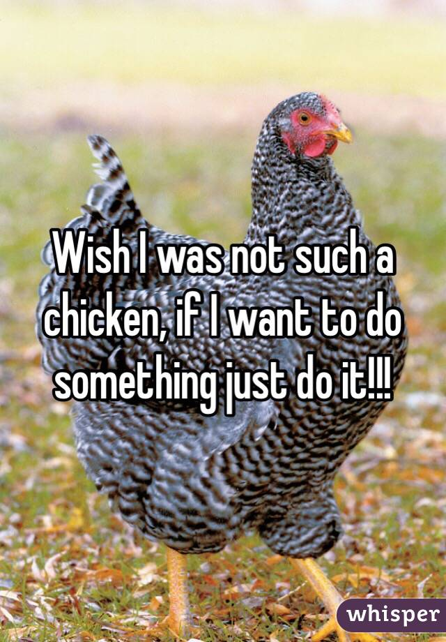 Wish I was not such a chicken, if I want to do something just do it!!!