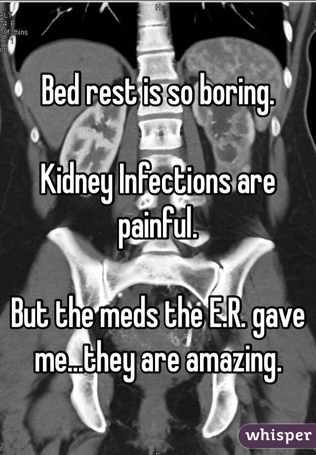 Bed rest is so boring.  Kidney Infections are painful.  But the meds the E.R. gave me...they are amazing.