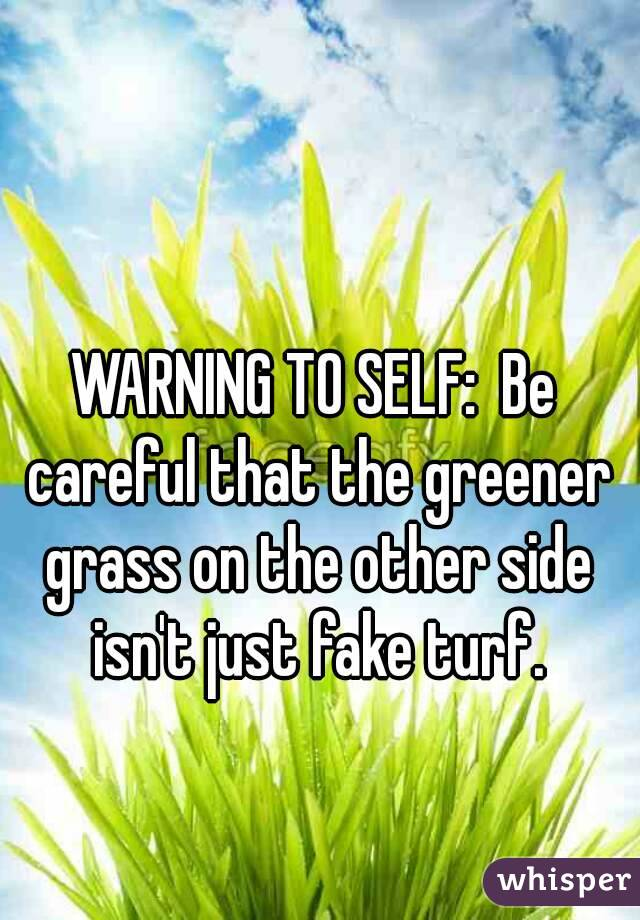 WARNING TO SELF:  Be careful that the greener grass on the other side isn't just fake turf.