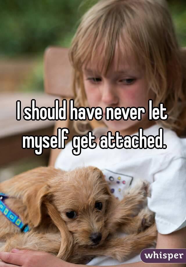 I should have never let myself get attached.