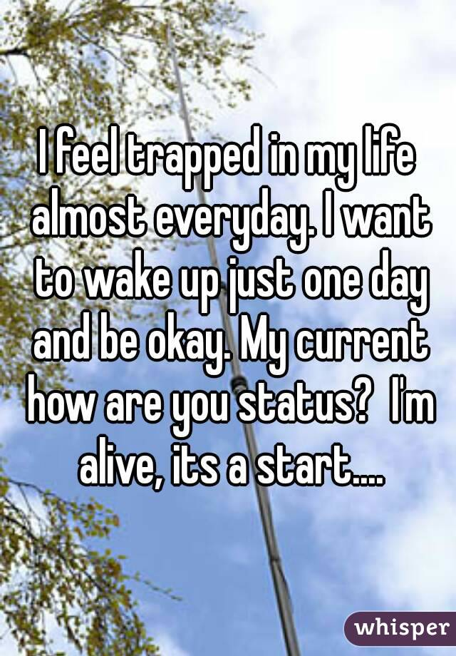 I feel trapped in my life almost everyday. I want to wake up just one day and be okay. My current how are you status?  I'm alive, its a start....