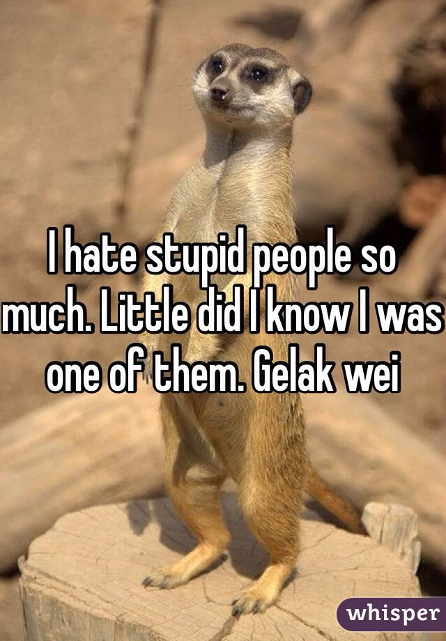 I hate stupid people so much. Little did I know I was one of them. Gelak wei