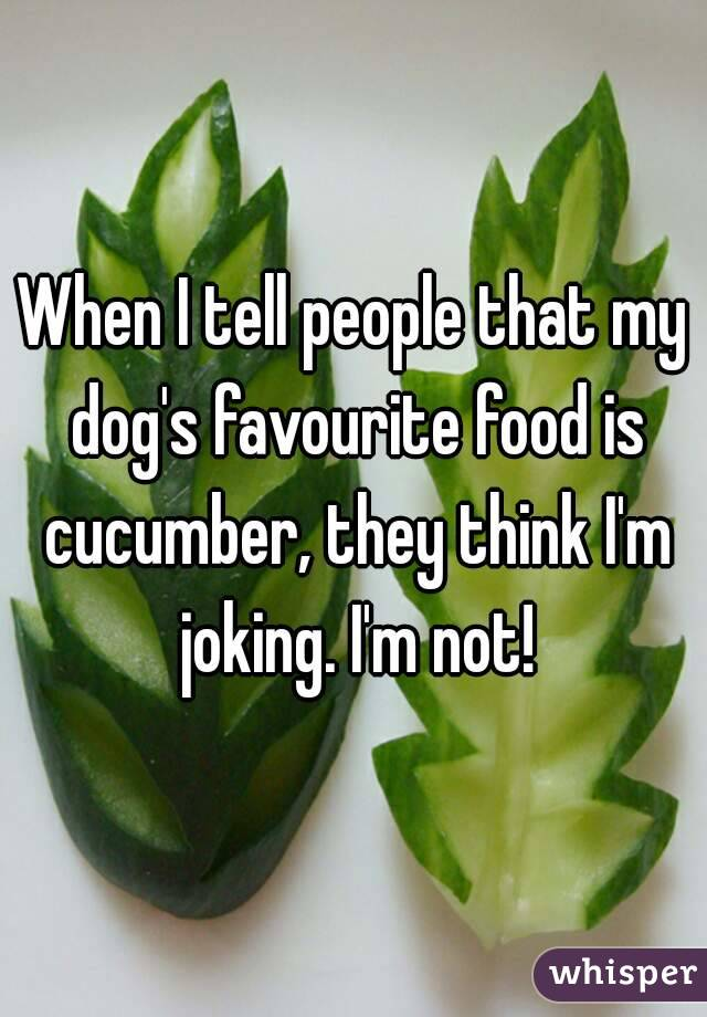When I tell people that my dog's favourite food is cucumber, they think I'm joking. I'm not!