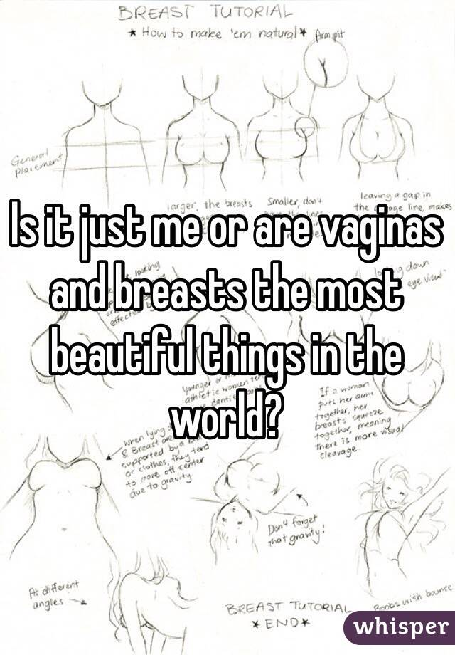 Is it just me or are vaginas and breasts the most beautiful things in the world?