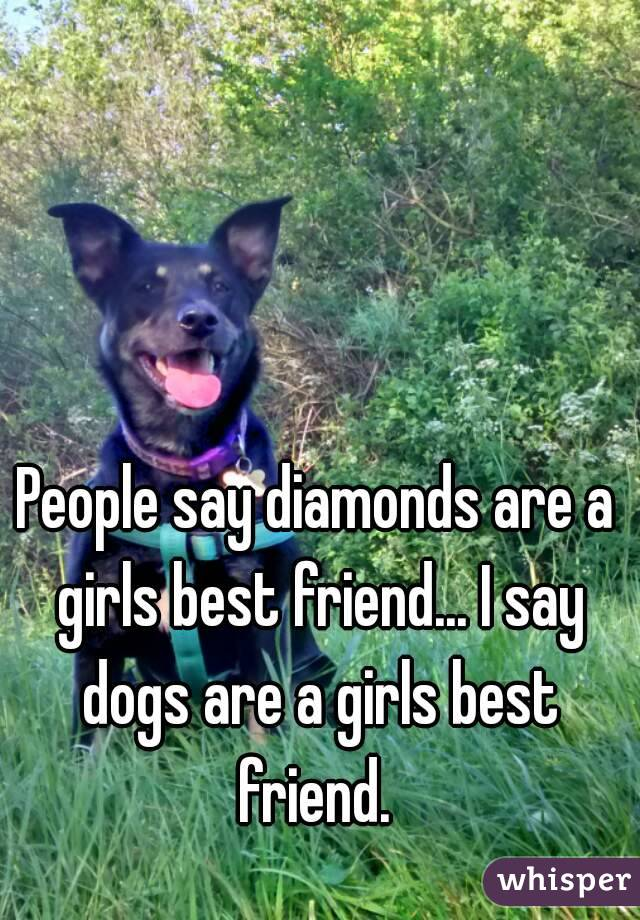 People say diamonds are a girls best friend... I say dogs are a girls best friend.