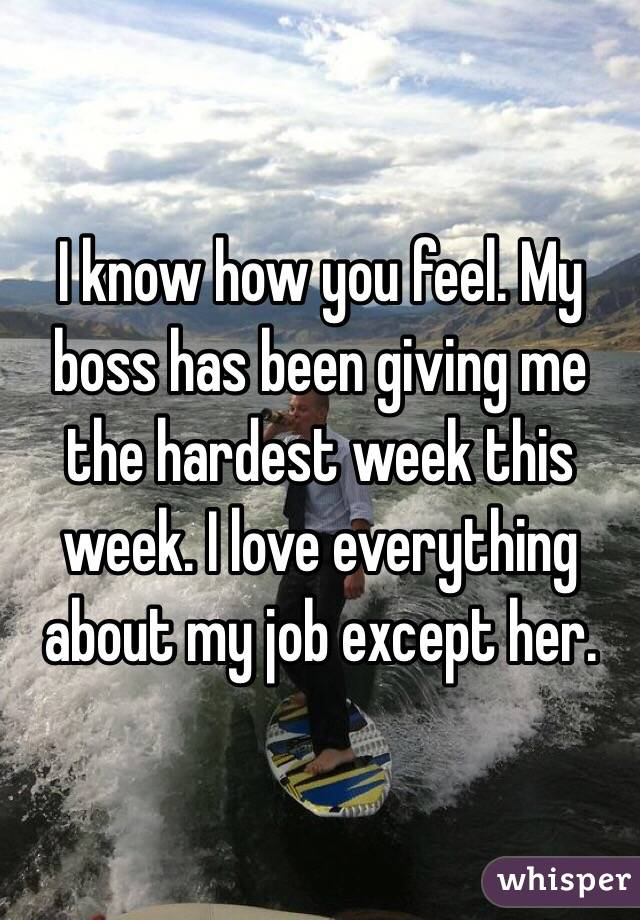 I know how you feel. My boss has been giving me the hardest week this week. I love everything about my job except her.