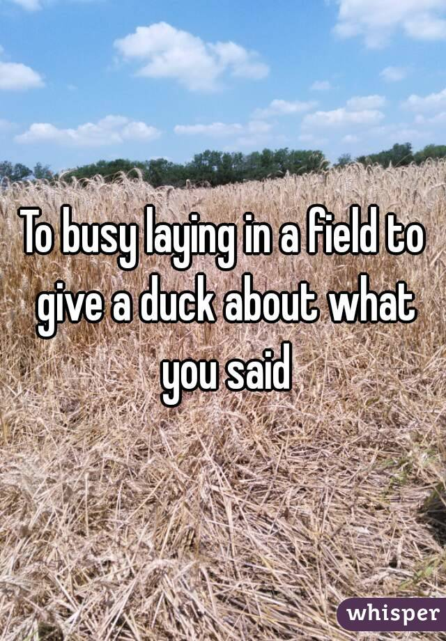 To busy laying in a field to give a duck about what you said