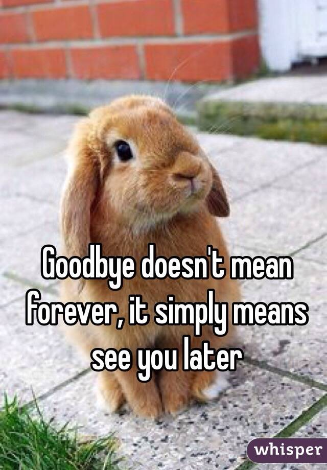 Goodbye doesn't mean forever, it simply means see you later