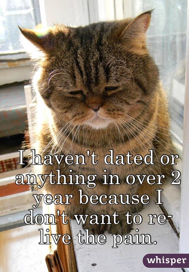 I haven't dated or anything in over 2 year because I don't want to re-live the pain.