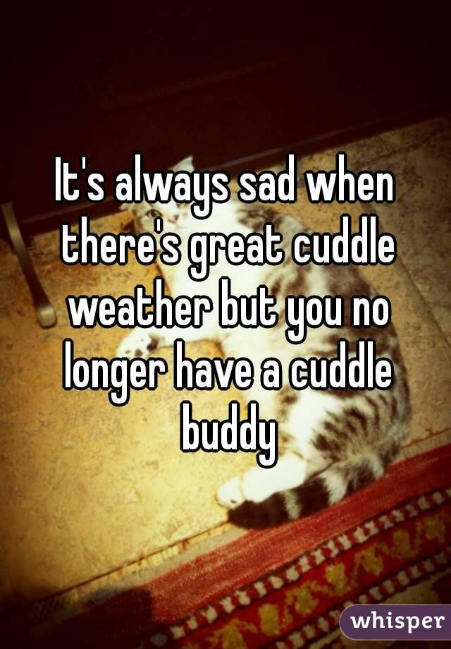 It's always sad when there's great cuddle weather but you no longer have a cuddle buddy