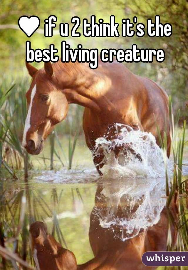 ♥ if u 2 think it's the best living creature