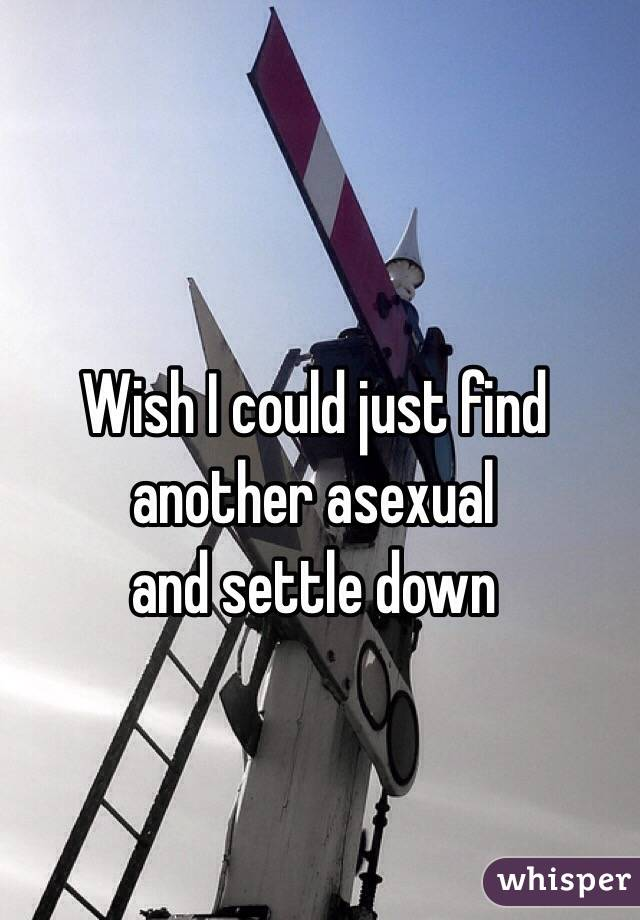 Wish I could just find another asexual and settle down
