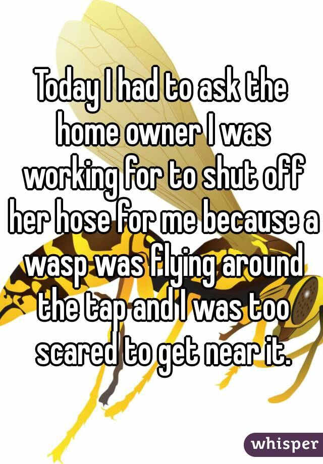 Today I had to ask the home owner I was working for to shut off her hose for me because a wasp was flying around the tap and I was too scared to get near it.