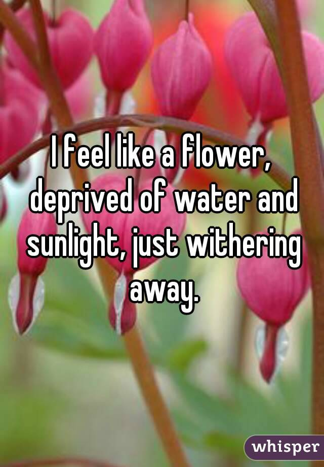 I feel like a flower, deprived of water and sunlight, just withering away.