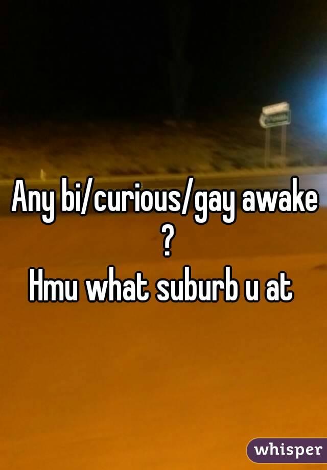 Any bi/curious/gay awake ? Hmu what suburb u at