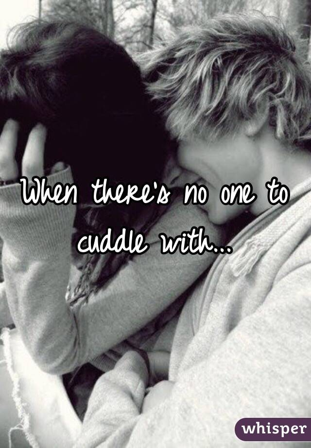 When there's no one to cuddle with...