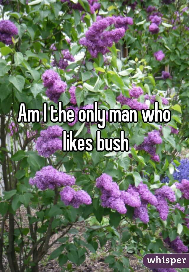 Am I the only man who likes bush