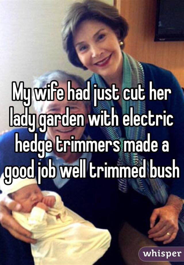 My wife had just cut her lady garden with electric hedge trimmers made a good job well trimmed bush