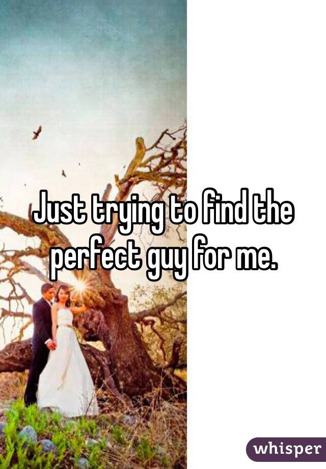 Just trying to find the perfect guy for me.
