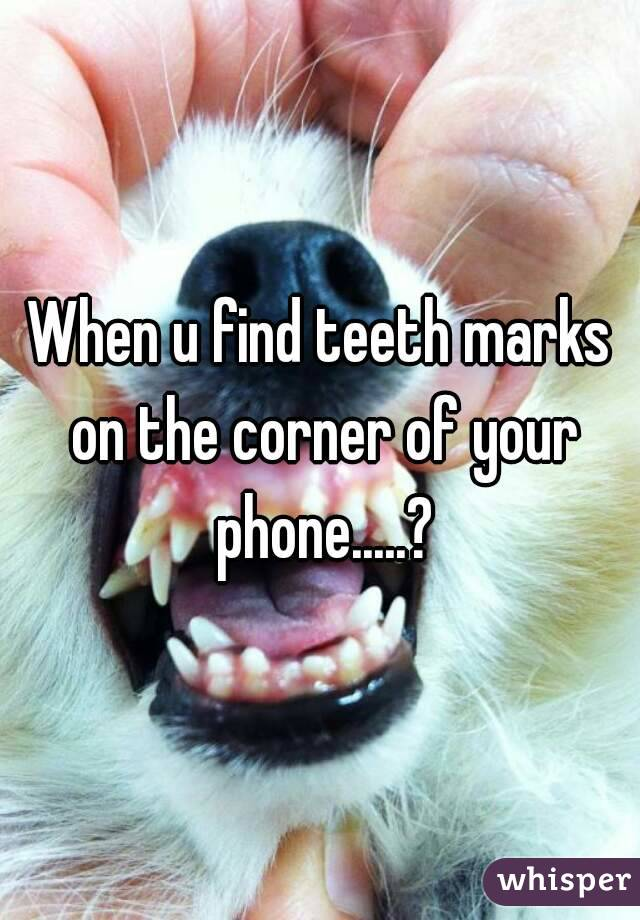 When u find teeth marks on the corner of your phone.....?