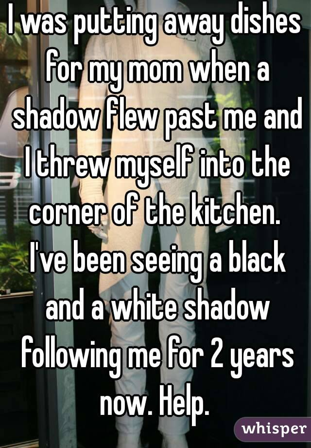 I was putting away dishes for my mom when a shadow flew past me and I threw myself into the corner of the kitchen.  I've been seeing a black and a white shadow following me for 2 years now. Help.