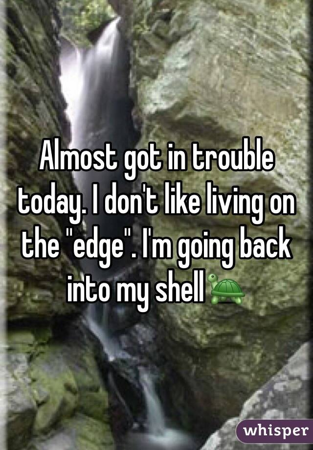 "Almost got in trouble today. I don't like living on the ""edge"". I'm going back into my shell🐢"