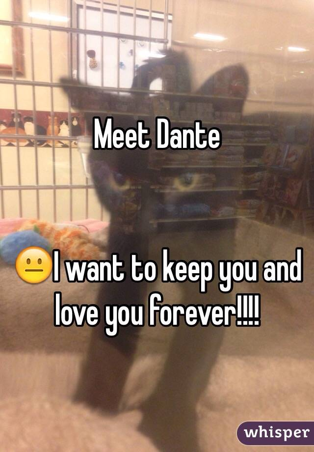 Meet Dante    😐I want to keep you and love you forever!!!!