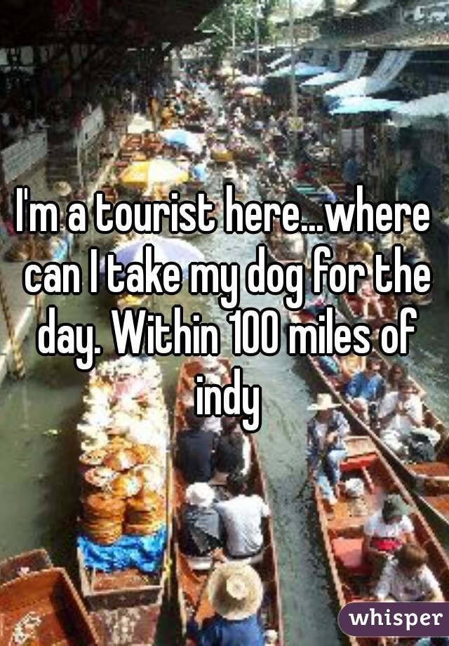I'm a tourist here...where can I take my dog for the day. Within 100 miles of indy