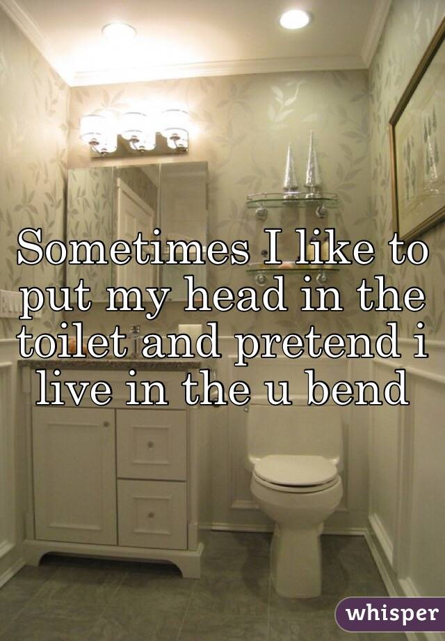 Sometimes I like to put my head in the toilet and pretend i live in the u bend