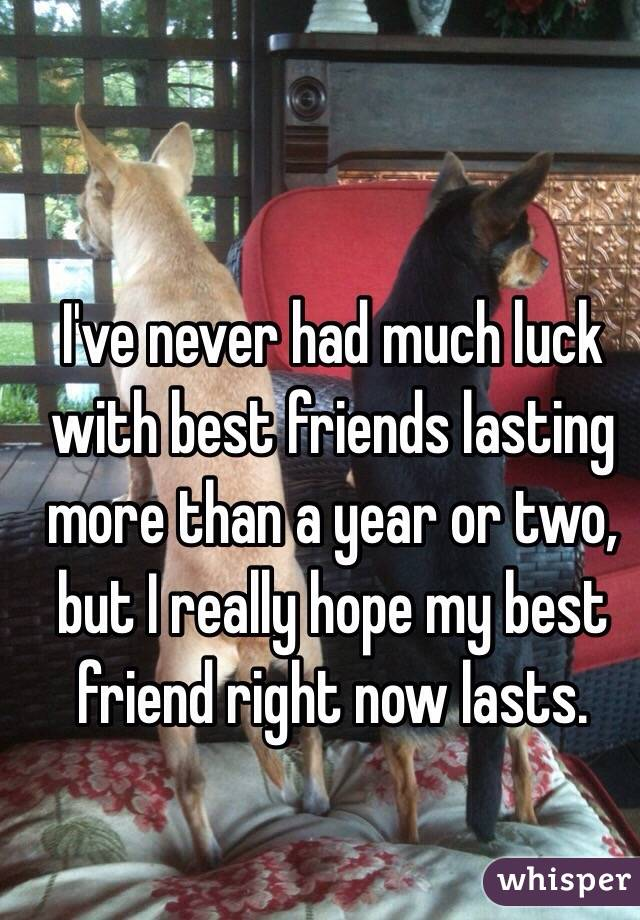 I've never had much luck with best friends lasting more than a year or two, but I really hope my best friend right now lasts.