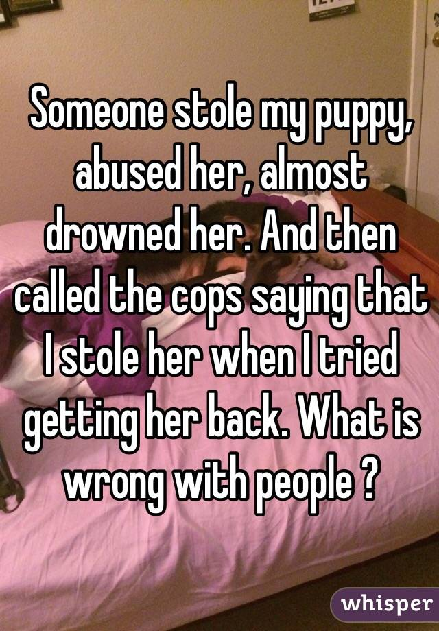 Someone stole my puppy, abused her, almost drowned her. And then called the cops saying that I stole her when I tried getting her back. What is wrong with people ?