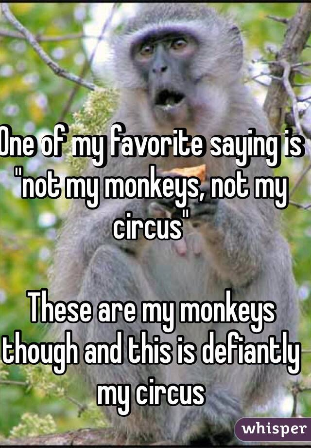 "One of my favorite saying is ""not my monkeys, not my circus""  These are my monkeys though and this is defiantly my circus"