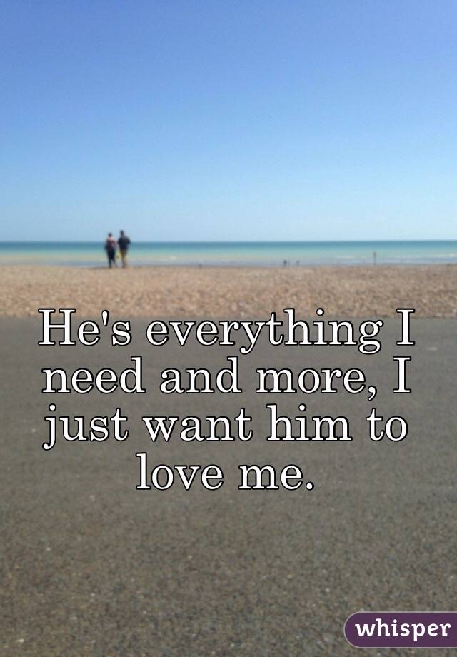 He's everything I need and more, I just want him to love me.