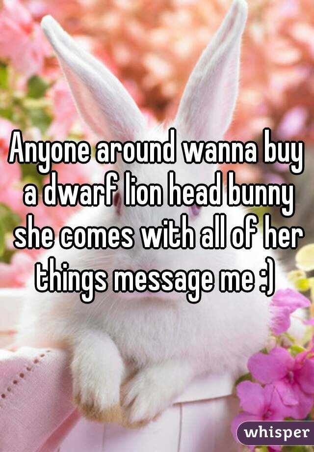 Anyone around wanna buy a dwarf lion head bunny she comes with all of her things message me :)
