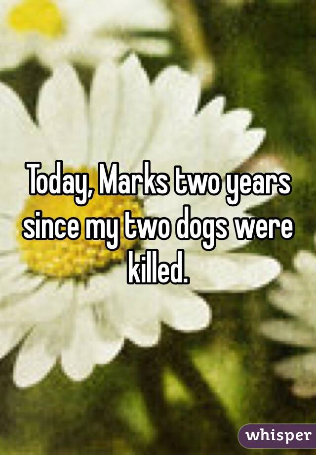 Today, Marks two years since my two dogs were killed.