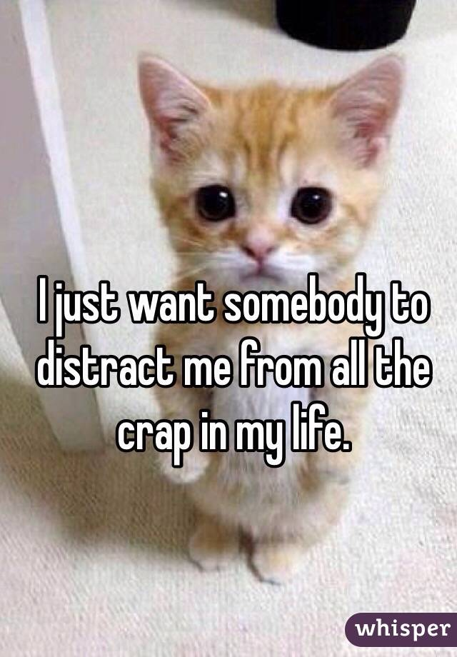 I just want somebody to distract me from all the crap in my life.