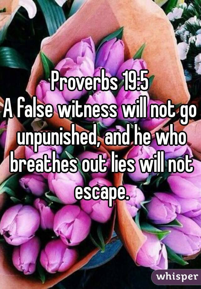 Proverbs 19:5 A false witness will not go unpunished, and he who breathes out lies will not escape.