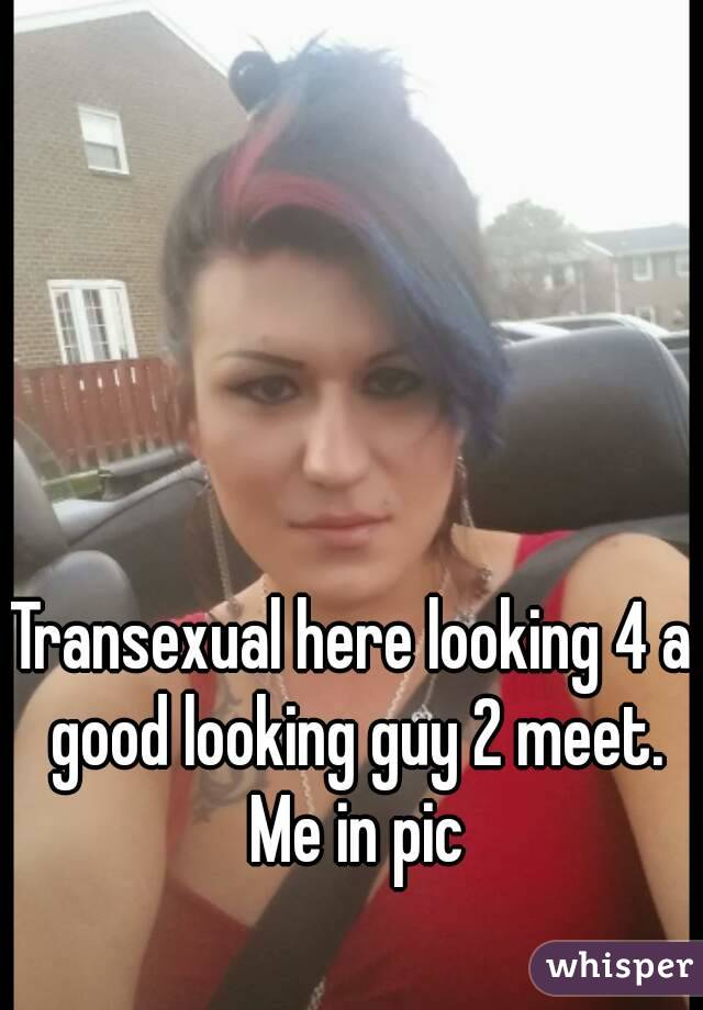 Where can i meet a transexual
