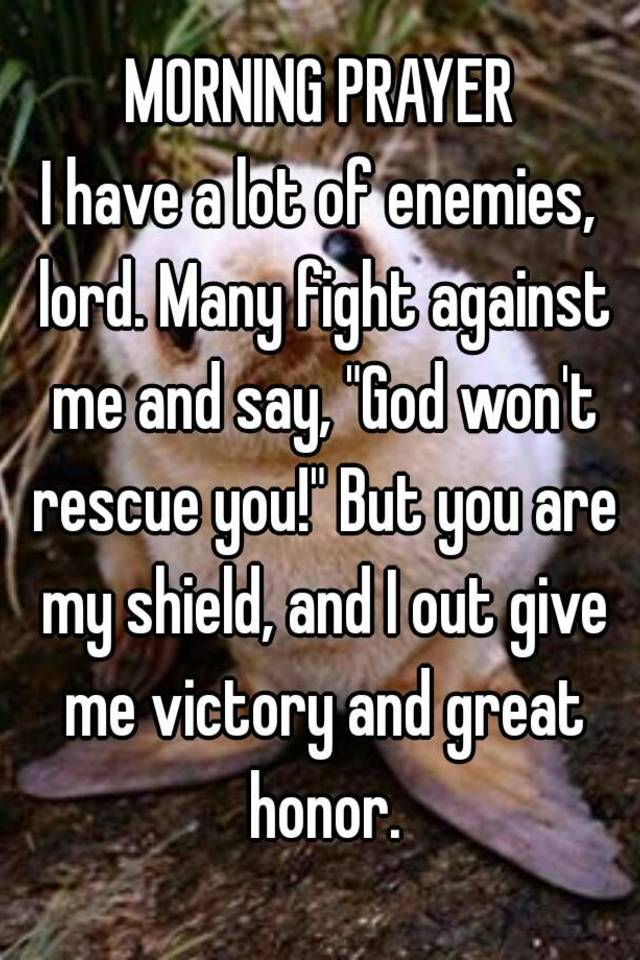 MORNING PRAYER I have a lot of enemies, lord  Many fight against me