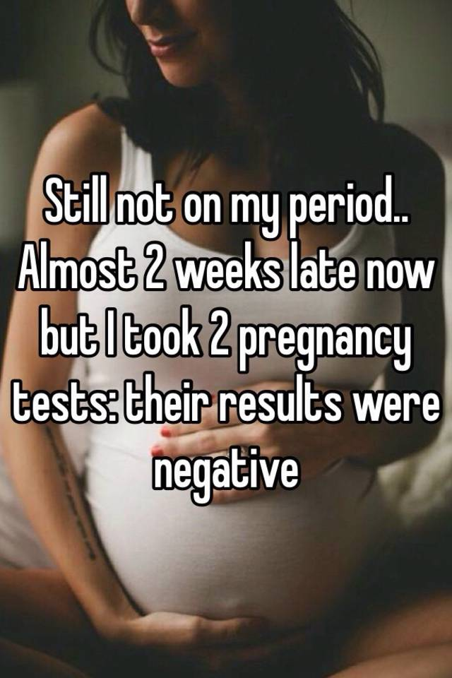 Still not on my period   Almost 2 weeks late now but I took 2 pregnancy