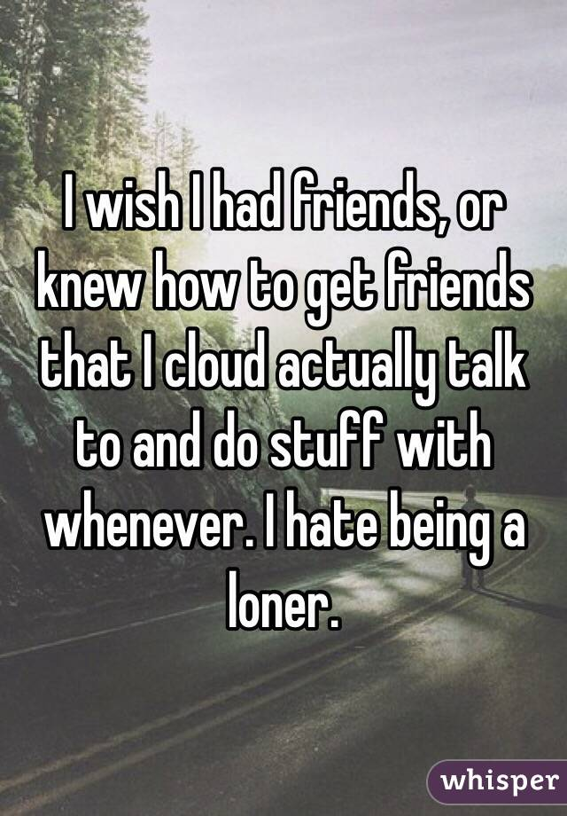 I wish I had friends, or knew how to get friends that I cloud actually talk to and do stuff with whenever. I hate being a loner.